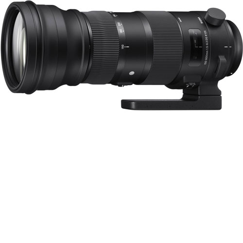 Sigma 150-600mm f/5-6.3 DG OS HSM Sports Lens hire - Canon mount ...